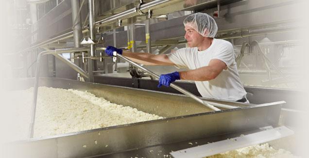 Licensed Wisconsin cheesemaker