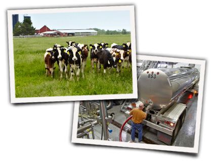 Fresh milk sourced from local Wisconsin farmers